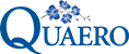 Quaero Investment Solutions Inc.